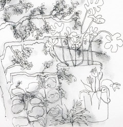 DRAWING THE GARDEN, SATURDAY